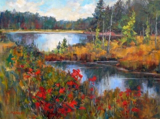 Beaver Pond by Lucy Manley
