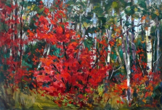 Red Maple by Lucy Manley