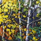 Algonquin Birches by Lucy Manley
