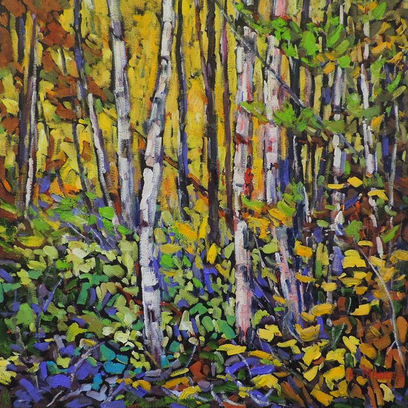 Yellows & Birches