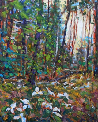 Trillium in the Woods 2 by Lucy Manley