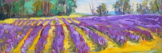 Forever Lavender by Lucy Manley